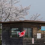 <中止>令和3年5月連休中の「紫電改」レプリカ公開日・資料館開館日について
